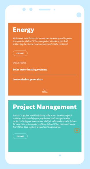 Balton CP group website case study