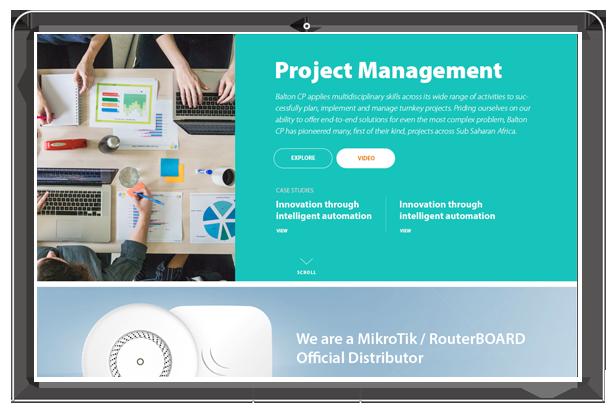 Balton CP website project management section